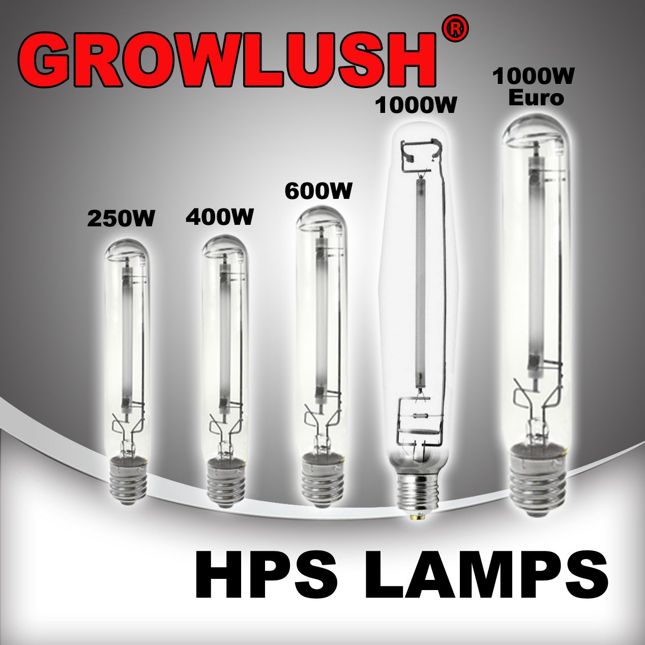 growlushhpslamps.jpg