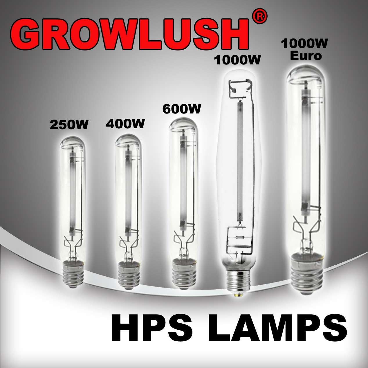 growlushhpslamps.jpg